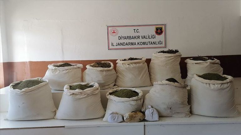 Turkey: Nearly 2.5M cannabis sativa roots seized