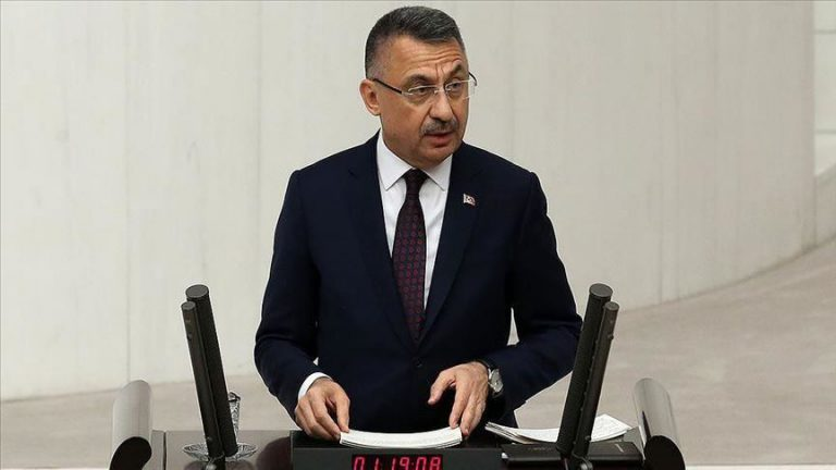 Turkey vows to do whatever required in int'l arena